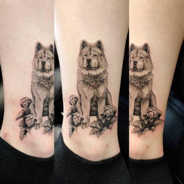 Pieni potretti ystävästä #tatuointi #artelysior #tattooparlour #artcollective #hyvinkää  #tattoo #tpartcollective #koira #koiratatuointi #hilla #dogtattoo