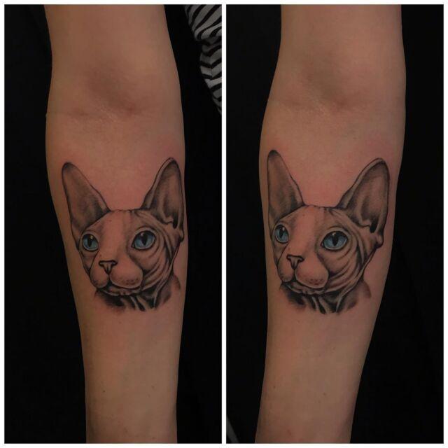 Karvaton kisuli käsivarressa! 🥰 #blackandgrey #sphynxcat #ink #sphynx #cat #sfinksit #tattoo #inked #tatuointi #hyvinkää #tattooparlour #artcollective