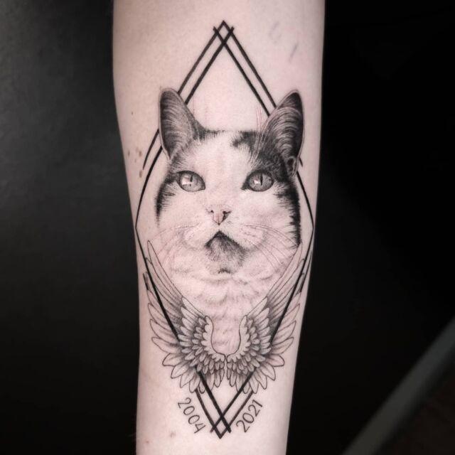 Ystävän muistolle #kissa #tatuointi #artelysior #tpartcollective #hyvinkää #kissatatuointi #eläintatuointi #muistotatuointi #eläinystävä  #cat #tattoo #cattattoo #animaltattoo #memorialtattoo