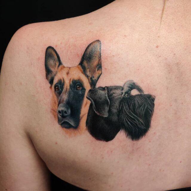 Tänään saatiin nämä kaverit valmiiksi! #tatuointi #artelysior #tattooparlour #artcollective #hyvinkää  #koirat #ystävät #koiratatuointi