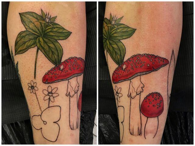 Aloiteltiin sääreen kasviaiheista projektia. Helmikuussa jatkellaan! 😊 #inprogress #colortattoo #firstsession #botanical #tattoo #amanitamuscaria #parisquadrifolia #inked #planttattoo #mushroom #nature #ink #tatuointi #hyvinkää