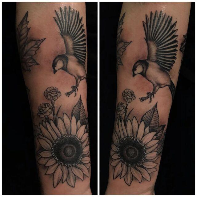 Tiainen ja auringonkukka käsivarressa, jatkoa pari viikkoa sitten tehdyille vaahteranlehdelle ja pihlajanmarjoille.  #blackandgrey #sunflower #carnations #birdtattoo #ink #girlytattoo #flowertattoo #inked #botanical #tattoo #tatuointi #hyvinkää